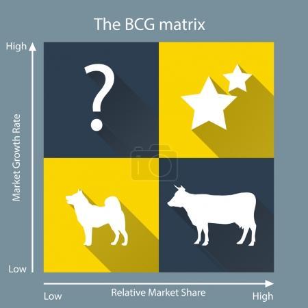 Portfóliové analýzy a BCG matica